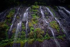 Shiraito-falls Royalty Free Stock Images