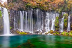 Shiraito Falls, Japan Royalty Free Stock Images