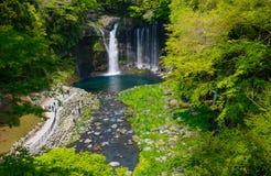 Shiraito Falls Stock Photos