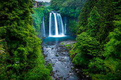 Shiraito kein Taki-Wasserfall stockbilder