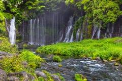 Shiraito vattenfall i den sydvästliga utlöparen av Mount Fuji Shizuoka Japan arkivfoto
