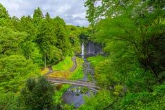 Shiraito vattenfall i den sydvästliga utlöparen av Mount Fuji Shizuoka Japan Royaltyfri Fotografi