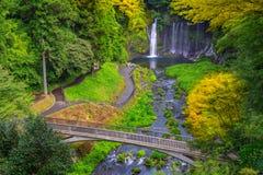 Shiraito vattenfall i den sydvästliga utlöparen av Mount Fuji Shizuoka Japan Royaltyfria Bilder