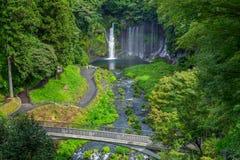 Shiraito vattenfall i den sydvästliga utlöparen av Mount Fuji Shizuoka Japan arkivbild