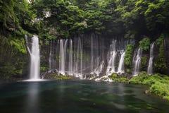 Shiraito vattenfall i Fujinomiya, Japan nära Mt Fuji Arkivbilder
