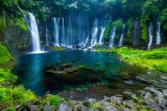 Shiraito vattennedgång Arkivbild