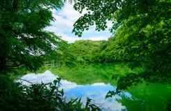 Shirakami-Sanchi σε Aomori, Ιαπωνία Στοκ εικόνα με δικαίωμα ελεύθερης χρήσης