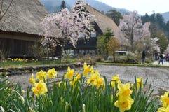 Shirakawa-gehen Sie Lizenzfreie Stockfotografie