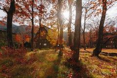 Shirakawa by i den sena november hösten som övervintrar säsong Arkivfoton