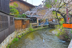 Shirakawa-minami Dori em Kyoto, Japão foto de stock royalty free