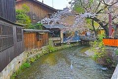 Shirakawa-minami Dori en Kyoto, Japón foto de archivo libre de regalías
