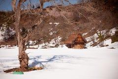 Shirakawa-vada nell'inverno Immagine Stock Libera da Diritti