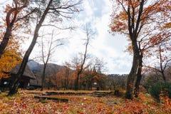 Shirakawa wioska w późny listopad jesieni zima sezon fotografia royalty free