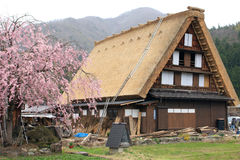 Shirakawago Stockbilder