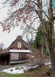 Shirakawago Historic Village in Gifu, Japan. Wooden houses at Shirakawago Historic Village with persimmon tree in Gifu, Japan Royalty Free Stock Images