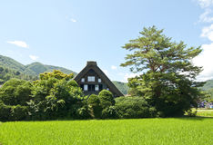 Shirakawago, Japan Royalty Free Stock Images