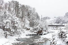 Shirakawago Japan Winter Royalty Free Stock Photo