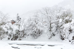 Shirakawago Japan Winter Stock Photography
