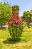 Shiraz flowers in the park Stock Photos