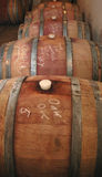 Shiraz maturing in oak barrels Royalty Free Stock Photo