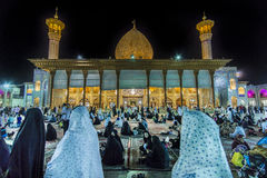 Shiraz Mosquee Imagem de Stock