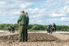 shire τα άλογα που οργώνουν παρουσιάζουν Στοκ Εικόνα