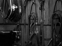 Shire horse harness. Details of diversity used shire horse harness and reins, background on wood Stock Photo