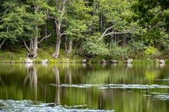 Shiretoko Five Lakes, Hokkaido, Japan stock photography