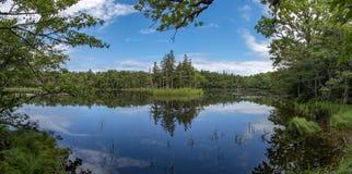 Shiretoko Five Lakes, Hokkaido, Japan royalty free stock photography