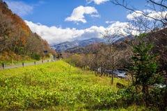 Shiretoko Nationaal Park, Hokkaido Japan stock foto