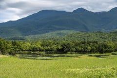 Shiretoko Unesco World heritage, Hokkaido, Japan royalty free stock image