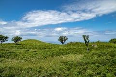 Shiretoko Unesco World heritage, Hokkaido, Japan royalty free stock photography
