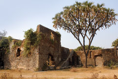 Shirgaon fort, Indien royaltyfri bild