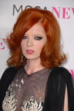 Shirley Manson Royalty Free Stock Image