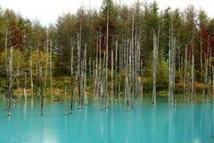 Shirogane Blue Pond stock photography