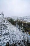 Shirohige瀑布 库存图片