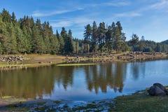 Shiroka polyana水库,保加利亚惊人的秋天视图  库存照片