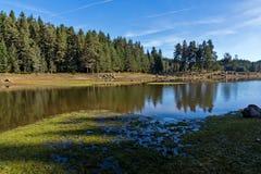 Shiroka polyana水库,保加利亚惊人的秋天视图  图库摄影