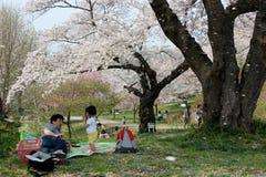 Shiroyamapark, Iwate-Prefectuur royalty-vrije stock foto