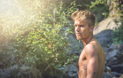 Shirtless blond young man in nature. Half body shot of shirtless blond young man`s profile, alone in nature, looking to a side Royalty Free Stock Photos