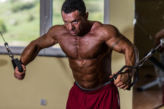 Shirtless body builder doing standing press white cable for chest. Shirtless bodybuilder doing standing press white cable for chest Stock Photo