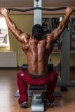 Shirtless bodybuilder doing heavy weight exercise for back. Shirtless body builder doing heavy weight exercise for back Royalty Free Stock Photo
