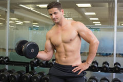 Shirtless bodybuilder lifting heavy black dumbbell looking at camera Stock Photography