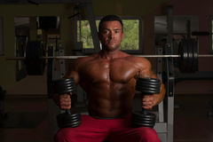 Shirtless bodybuilder posing with dumbbell at the bench. Shirtless body builder posing with dumbbell at the bench Stock Photography