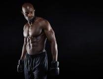 Shirtless boxer looking away Royalty Free Stock Photo