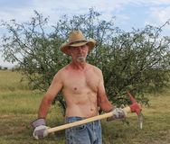 A Shirtless Cowboy Uses a Red Pickax Royalty Free Stock Photo