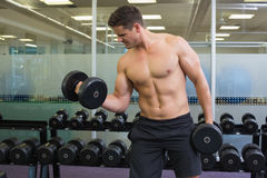 Shirtless determined bodybuilder lifting heavy black dumbbells Stock Photo