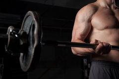 Shirtless guy lifting weights. Torso of a shirtless guy lifting weights Royalty Free Stock Photo