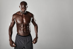 Shirtless male african model with muscular build Royalty Free Stock Image