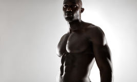 Shirtless male african model with muscular build Royalty Free Stock Photography